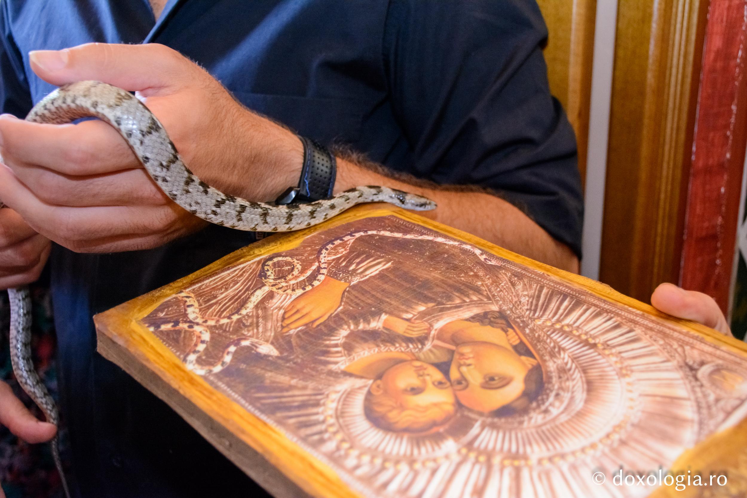 Pelerinaj in Grecia de ziua Adormirii Maicii Domnului la biserica cu serpi din Kefalonia Data de plecare: 10.08.2019 – Data de sosire: 19.08.2019, Tarif: 370 euro